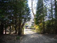 longdown-road-farnham-054