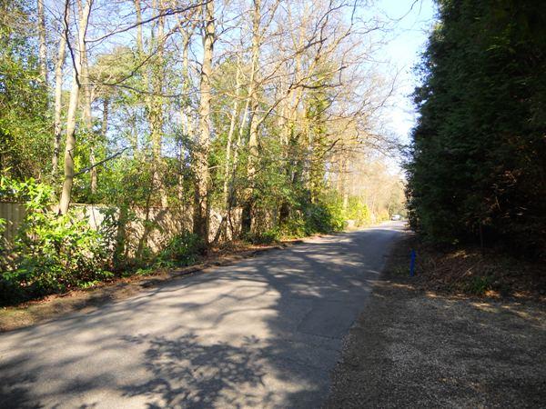 longdown-road-farnham-057