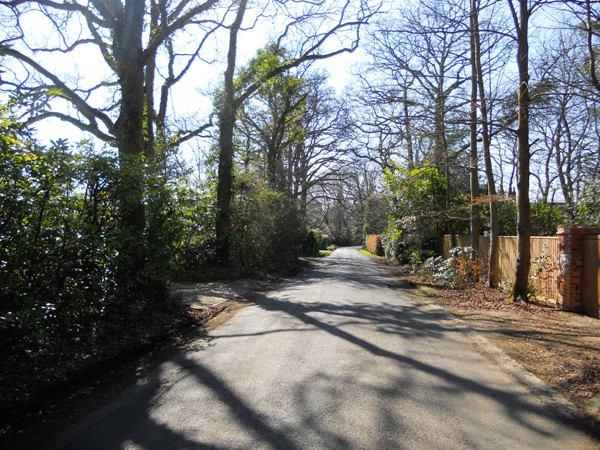 longdown-road-farnham-058